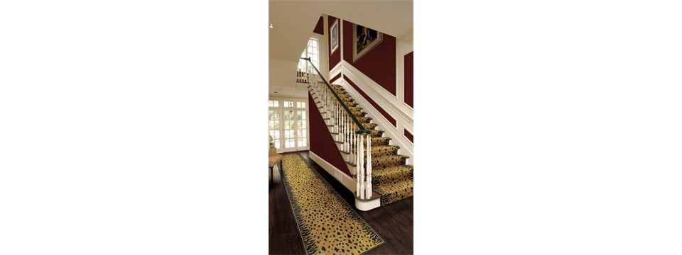 stanton shalimar carpet stairs and runner