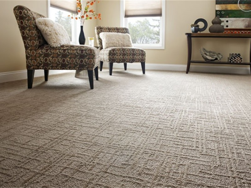 ... 2901e937937330242197a4e461cb87f2 Shaw Carpet Linear Design Pattern Carpet  Living Room ...
