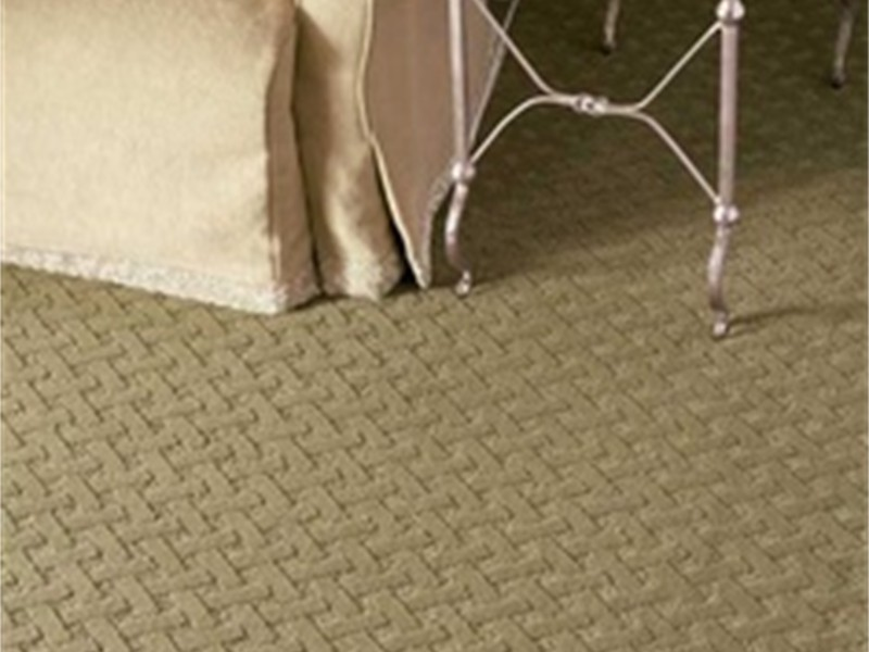 stainmaster carpet by dixie home sage green - Stainmaster Carpet