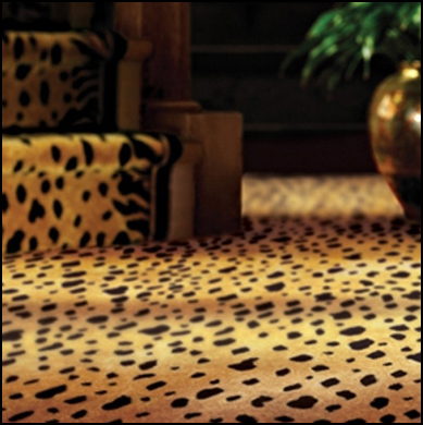 ... To Wall Carpeting Most Of These Fibers Are Reserved For Area Rug  Construction Mainly Due To Cost And Clean Ability. These Fibers Are  Generally Made Only ...